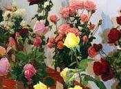 Roses tardor: impresiones