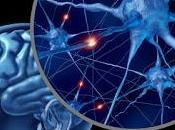 Neurociencia para julia (2012), xurxo mariño. viaje exploración máquina mente.