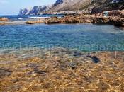 reflejos anaranjados dorados playa Rotes