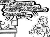 vuela pluma] Constitución: reforma necesaria