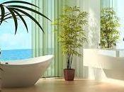Cómo decorar baños acogedores