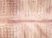 Palimpsesto Arquímedes registro fósil