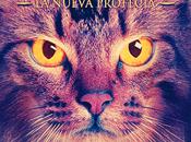 Reseña #203 gatos guerreros. nueva profecía: Medianoche Erin Hunter