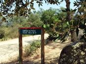 Megalitismo: Dolmen Pedra Gentil