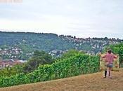 mejores vistas Stuttgart