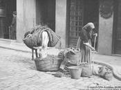 Fototeca: burro trapera. Madrid, hacia 1920