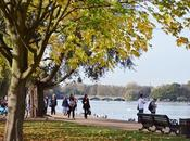 Hyde Park Primavera Otoño {London III}