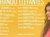 Escuchando Elefantes inicia gira nacional internacional, ¡mira todas fechas!
