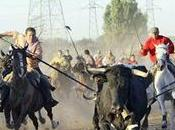 vuela pluma] Toro Vega: Animales, bestias humanoides