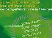 Programa online: gestión positiva familia