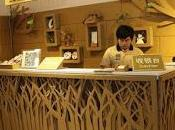 restaurante hecho cartón