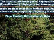 Phyllopsora (Ramalinaceae, Ascomycota): Charla Taller desde Noruega para Venezuela