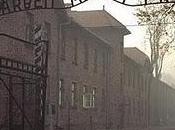 Auschwitz fotitis