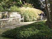 Jardines Terapéuticos Healing Gardens