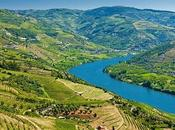 Valle Duero, Oporto