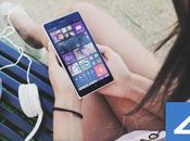 Disponible 4shared 2.0.0 BETA para Windows Phone