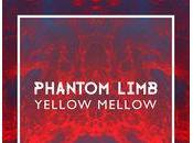 Yellow Mellow llega música para quedarse