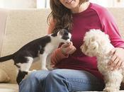 Pasos para efectiva introducción entre perros gatos