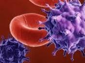 Descubren cómo eliminar células infección latente