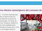 consumo productos origen animal enfermedades