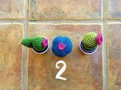 Mini cactus (con patrón)