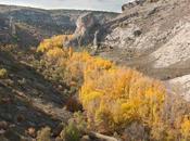 Parque Natural Barranco Dulce: ruta familia