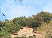 CEMENTERIO NIMBRA (Quirós)