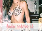 Todo sobre Victoria Secret Fashion Show 2015