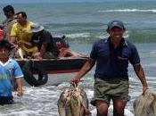 Pescadores artesanales reciben apoyo municipalidad cerro azul…