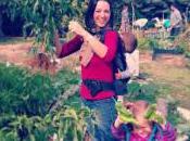 cosas aprendido alquiler huerto ecológico -también- cambiado vida)