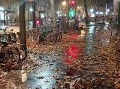 París, ecos llanto.