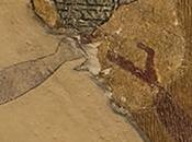 Arqueología sentidos: interpretar…