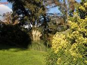 Fuente Berro hacen noventa parques