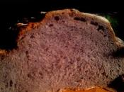 harina maiz morado azul