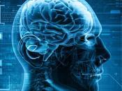 Klotho, poder hormona cerebral usted nunca oído