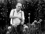 Charles Bukowski groupie