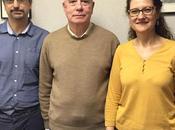 investigadores ICMAT elegidos presidente vicepresidente segundo RSME