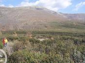 Guadalajara norte Sierra Ayllón