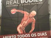 Real Bodies Lisboa