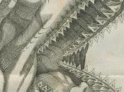 Fósiles: ¿lenguas piedra dientes tiburón?