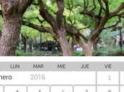 Como crear calendario Gimp