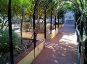 Jardín Mercè Rodoreda