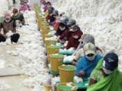 India, cuatro grandes empresas españolas Lista Negra trabajo esclavo; Cataluña, Baños dimite sigue corriendo como pollo cabeza.
