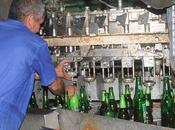 Presenta inestabilidad producción cerveza embotellada Granma #Cuba
