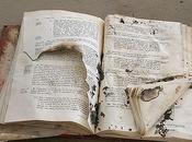 Maltratadores libros