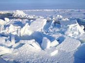 ¿Por polo frió norte?