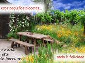 """allá """"mix"""" floral anual"""