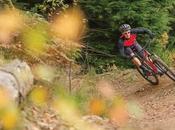 Boardman renueva gama bicicleta rígidas para montaña disponibles catálogo 2016