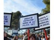 Manifestación Castellar Vallés contra Maltrato Animal