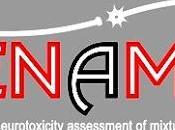 """PROYECTO EUROPEO """"DENAMIC"""": resultados advierten neurotoxicidad sustancias cotidianas bajas dosis, cómo causan efectos permanentes cerebro niños, """"pandemia silenciosa"""". presentará"""